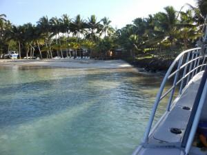 Samoa 2012 2011-01-01 093 (1024x768)
